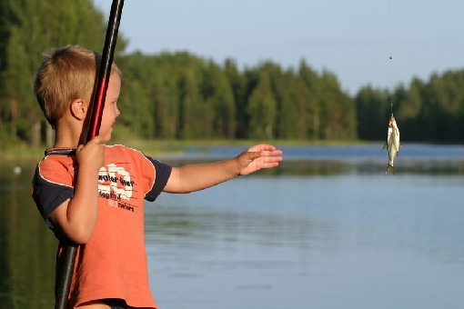 Hook-and-line angling for roach is a form of holiday fishing that is sure to yield some catches. Lake Ruokovesi, Heinävesi.