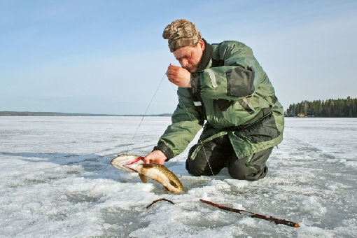In winter, pike hooks are set at the edges of deeps a couple of metres below the ice. Lake Toisvesi, Virrat.
