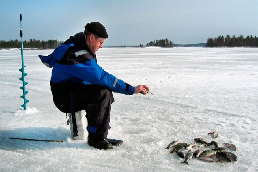 A good catch depth for perch and whitefish in the Kuussaarenselkä mid-lake area of Lake Höytiäinen is 12 to 13 metres.