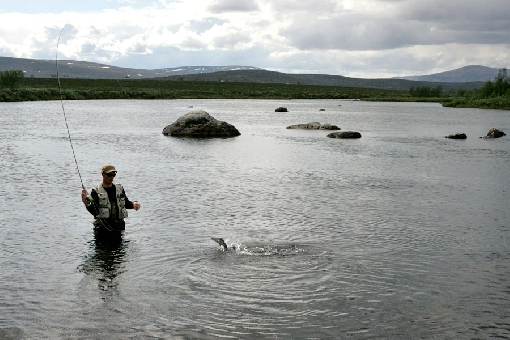 Grayling angler in the wilderness of Northern Lapland.