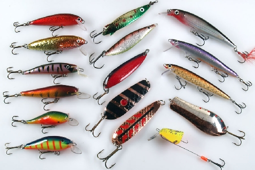 salmon, Fly Fishing Bait