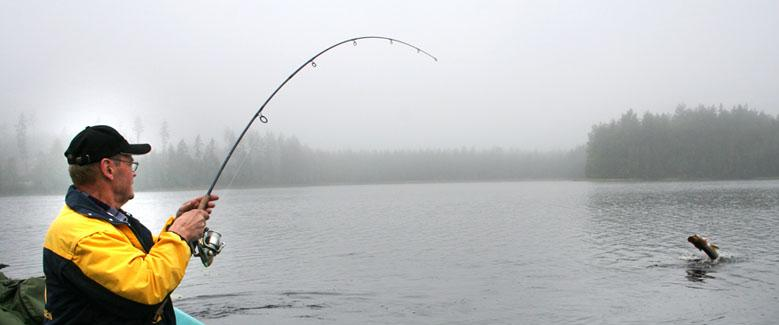National fishing travel guide of finland for Where to go fishing