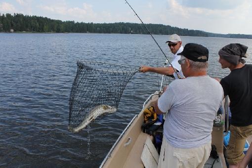 keitele järvi kalastus