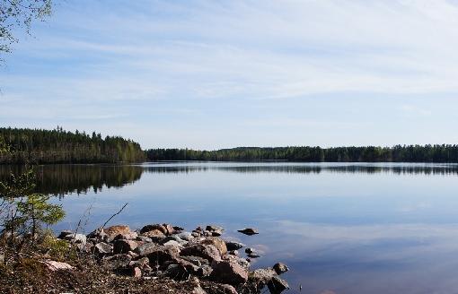 коттеджи в финляндии напрямую от владельца OLDOS Tour - Отдых в Финляндии