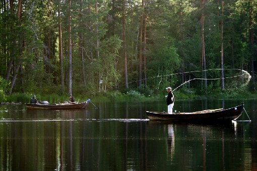 In the special fishing site of Kattilakoski Rapids in Ruunaa, anglers can rent the entire fishing grounds.