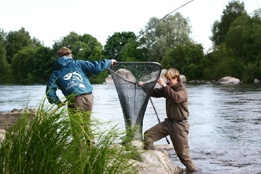 River Kymijoki is the most popular river fishing site in Southern Finland.