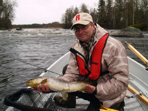 The Hannulankoski Rapids is the realm of big trout. Wild fish with adipose fins must be released here.