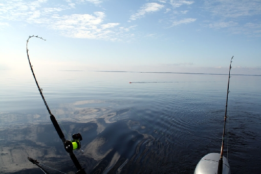 Trolling for brown trout on Lake Inari.